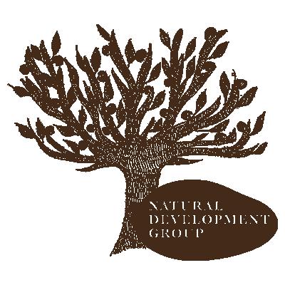 Logo-NDG-WEB
