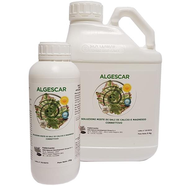 algescar600x600_2